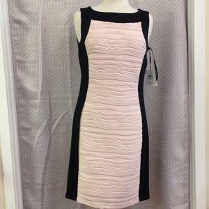 Calvin Klein dress NWT size 8 blush pink and black
